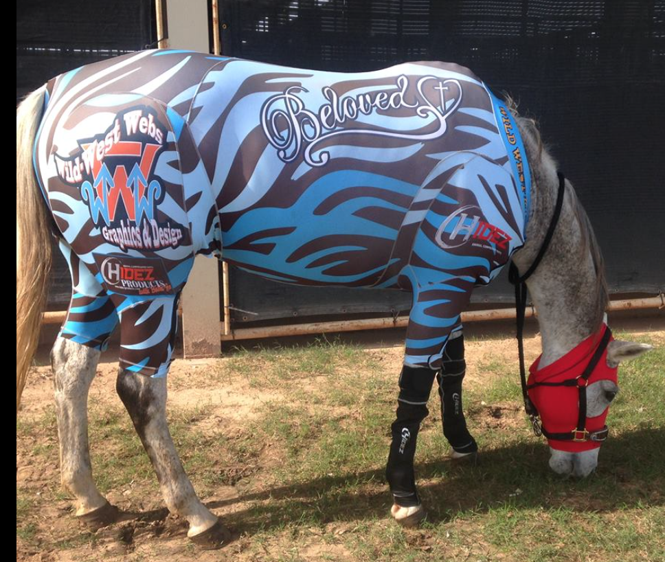 Equine Active Suit- Custom Design- Horse Size