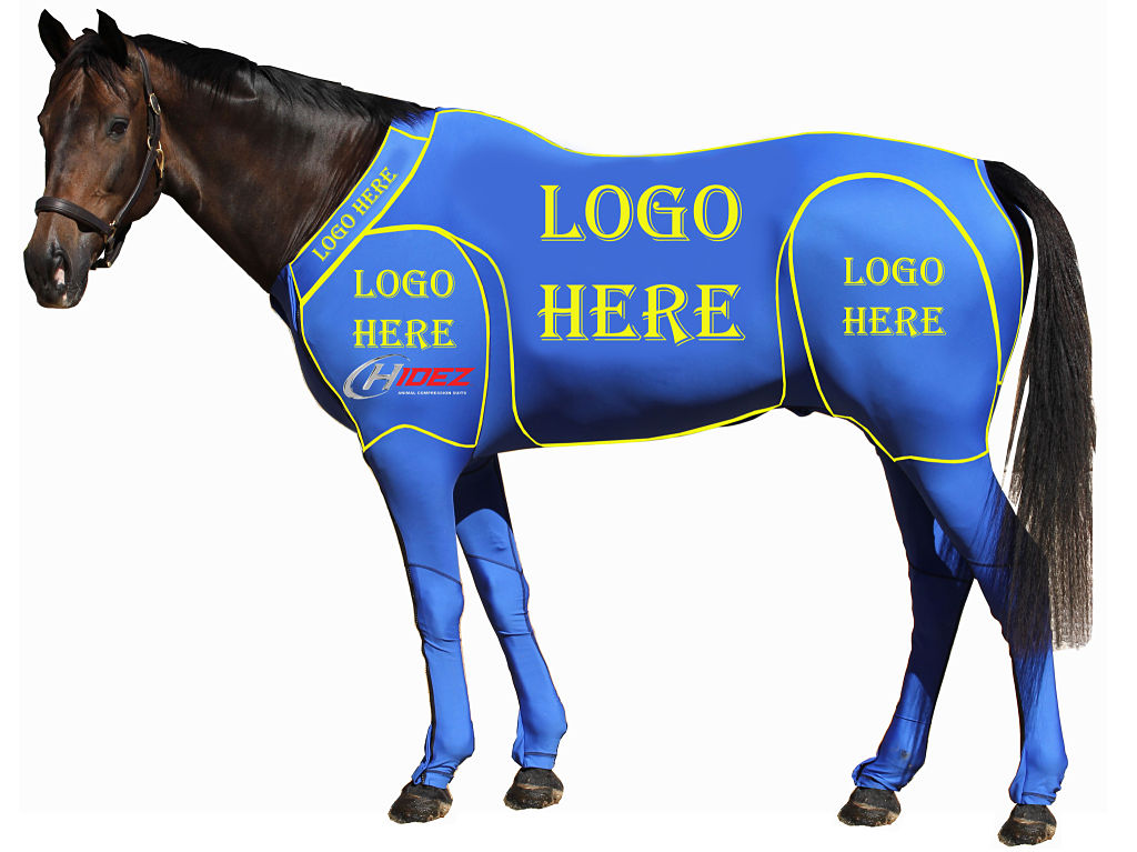 Equine Suit- Custom Design- Horse Size