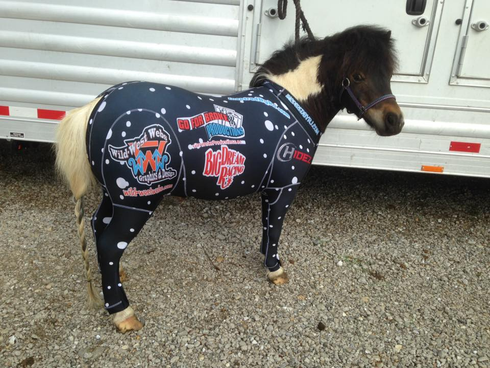 Equine Suit- Custom Design- Miniature Sizes